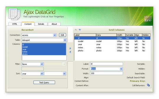 Ajax DataGrid